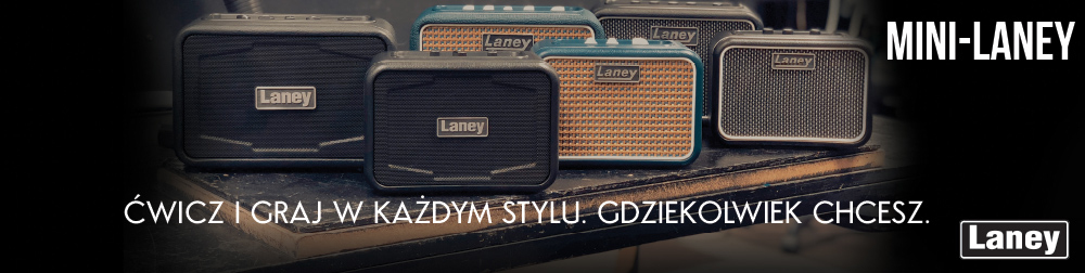 laney-1000x252