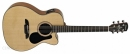 ALVAREZ AF 30 CE (N) gitara elektroakustyczna