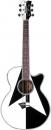 Dean Michael Schenker Performer - gitara elektroakustyczna