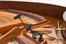 DPA 4099-DC-1-101-P - 2 Mikrofon do fortepianu