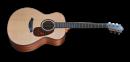 Furch G40 Deluxe LR - Gitara elektroakustyczna