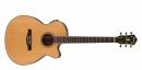 Ibanez AEG15II-LG - gitara elektroakustyczna