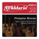 D'Addario EPBB170 45-100 - struny do gitary basowej akustycznej