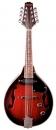 Stagg M 50 E - mandolina elektro-akustyczna