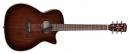ALVAREZ AGW 77 CE LR AR (N) gitara akustyczna