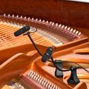 DPA d:vote 4099-DL-1-101-P - 2 Mikrofon do fortepianu