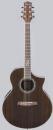 Ibanez EW20WNE NT - gitara elektroakustyczna