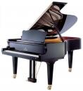 Seiler 208 Professional - fortepian akustyczny