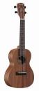 ALVAREZ RU 22 C ukulele