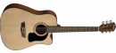 WASHBURN AD 5 CE (N) gitara elektroakustyczna