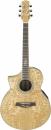 Ibanez EW20LASE NT - gitara elektroakustyczna