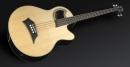 Warwick Alien Standard WAC1574-10PP-SAG-FR - bas akustyczny