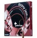 Galli GSB10lp - struny do gitary akustycznej loop end