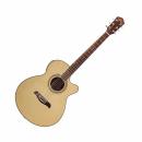 OSCAR SCHMIDT OG 10 CE (N) gitara elektroakustyczna