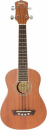 WASHBURN U 20 (N) ukulele