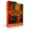 Toontrack Reggae EZX [licencja]