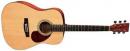 VGS D-1 Gewa Pure Gitara Akustyczna NT