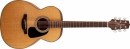 Takamine GN10-NS - gitara akustyczna