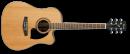Ibanez PF17ECE-LG - gitara elektroakustyczna