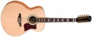 Vintage V1700-12 - gitara akustyczna 12str