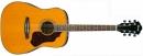 Ibanez SGT120E-ATN - gitara akustyczna
