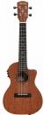 ALVAREZ RU 22 S CE ukulele