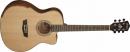 WASHBURN WCG 15 CE (N) gitara elektroakustyczna