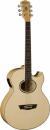 WASHBURN EA 20 (N) gitara elektroakustyczna