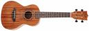 FLIGHT ELISE ECKLUND SIGNATURE ukulele koncertowe