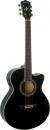 WASHBURN EA 12 (B) gitara elektroakustyczna