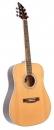 FlyCat PRM NT Premium - gitara akustyczna