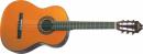 WASHBURN C 40 (N) gitara klasyczna
