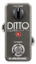 TC Electronic Ditto Looper - efekt gitarowy
