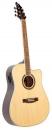 FlyCat STD NT CEQ Standard - gitara elektroakustyczna