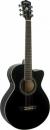WASHBURN EA 10 (B) gitara elektroakustyczna