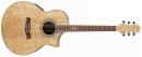 Ibanez EW20ASE NT - gitara elektroakustyczna