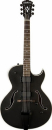 WASHBURN HB 17 (CB) gitara elektryczna