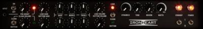 Laney IRT120H - lampowa głowa gitarowa 120W