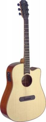 James Neligan LIS-DCFI - gitara elektro-akustyczna-6312