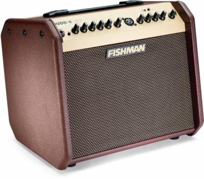 Fishman Loudbox Mini Bluetooth wzmacniacz akustyczny