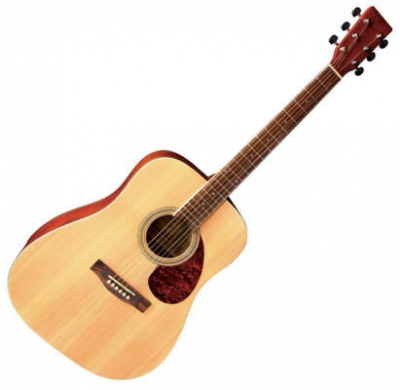 VGS Gitara Akustyczna Pure D10 Natural