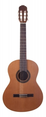 JM Forest Student 4/4 - gitara klasyczna-5866