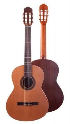 JM Forest Student 4/4 - gitara klasyczna-5867