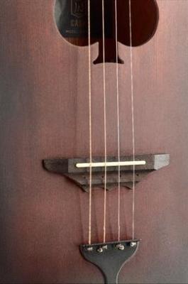 James Neligan Cask-Firkin - gitara akustyczna, cigarbox-13495