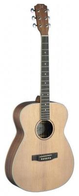 James Neligan ASY-A - gitara akustyczna-6305