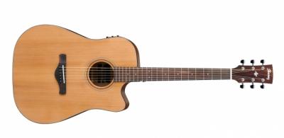 Ibanez AW65ECE-LG - gitara elektroakustyczna
