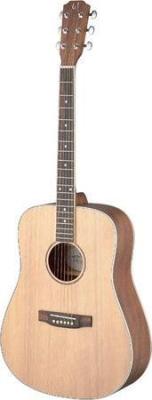 James Neligan ASY-D LH - gitara akustyczna, leworęczna-6304